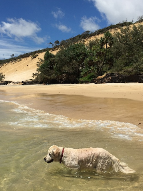 Rainbow Beach - Our First Destination on our Road Trip Adventure