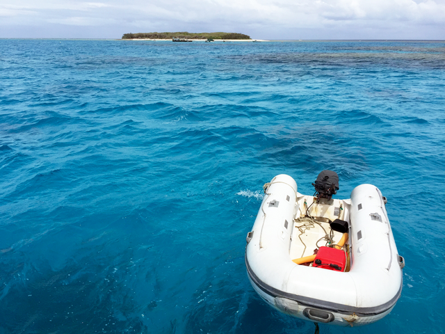 Take a tour to Lady Musgrave Island while staying at Workman's Beach Campground