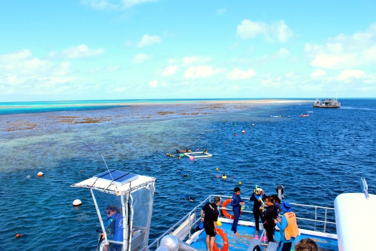 Reefworld on Hardy Reef - Reefsleep Experience