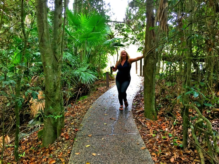 Eungella National Park is one of the things to do in Mackay & Whitsundays