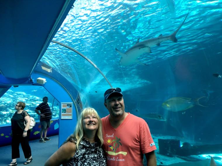 Reef HQ Aquarium Townsville