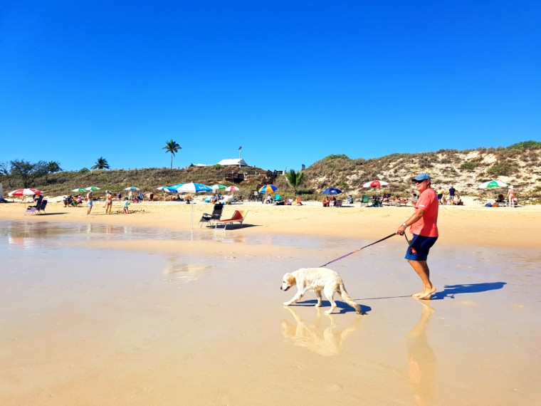 Traveling Australia with our Dog MACKS