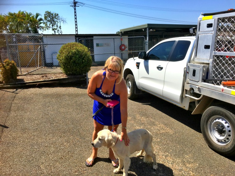Retrieving MACKS from the Darwin Dog Pound