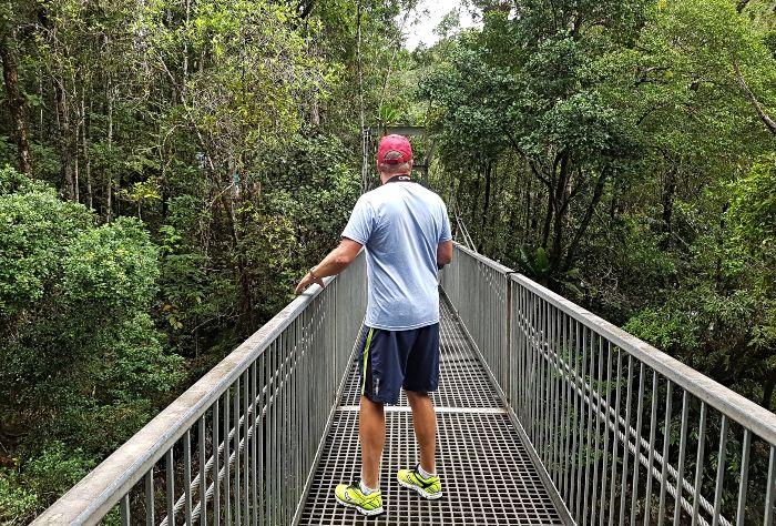 Rex Creek Suspension Bridge
