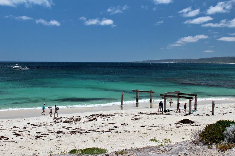 Hamelin Bay - Things to see and do in Margaret River