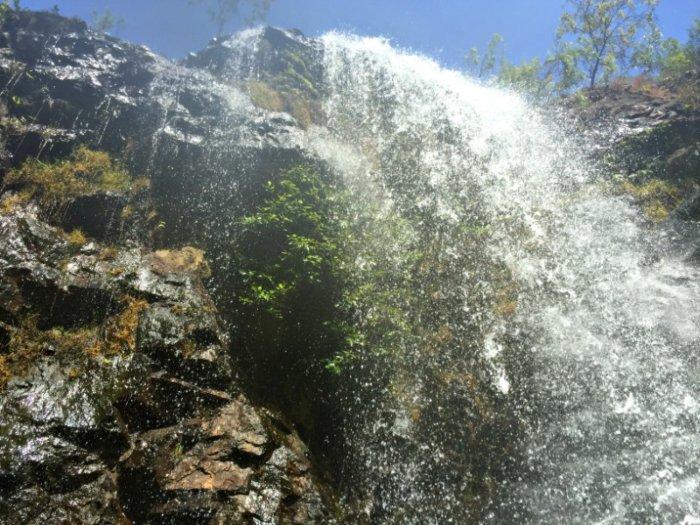 Under Florence Falls