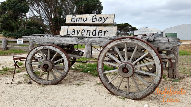 How much does it cost to travel to Kangaroo Island