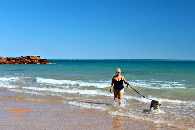 Traveling with pets in Broome