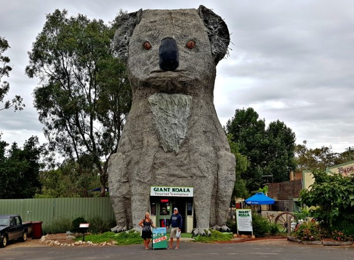 Big Things of Australia - The Big Koala at Dadswell Bridge