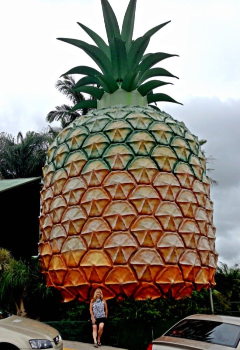 Big Things of Australia - The Big Pineapple Nambour Qld