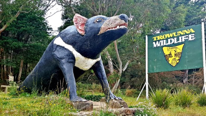 Big Things of Australia - The Big Tassie Devil at Trowunna Wildlife Park Tas