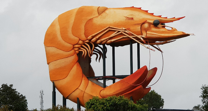 Big Things of Australia - The Big Prawn Ballina NSW