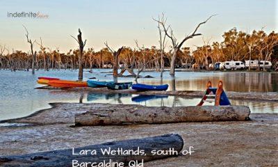 Lara Wetlands