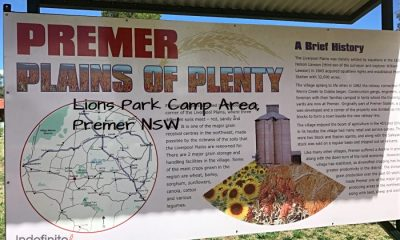 Lions Camp Premer