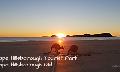 Cape Hillsborough Tourist Park