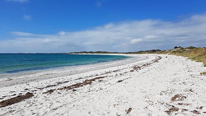 Sandy Cape Recreational Park beach