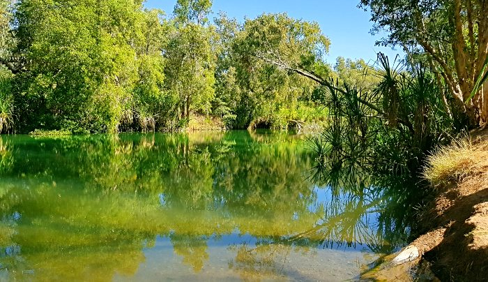 The tranquil side of Gregory River