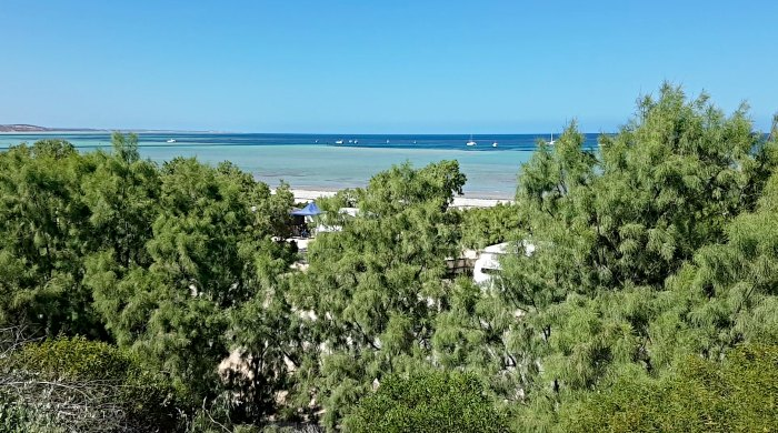 Views from the Denham Seaside Caravan Park