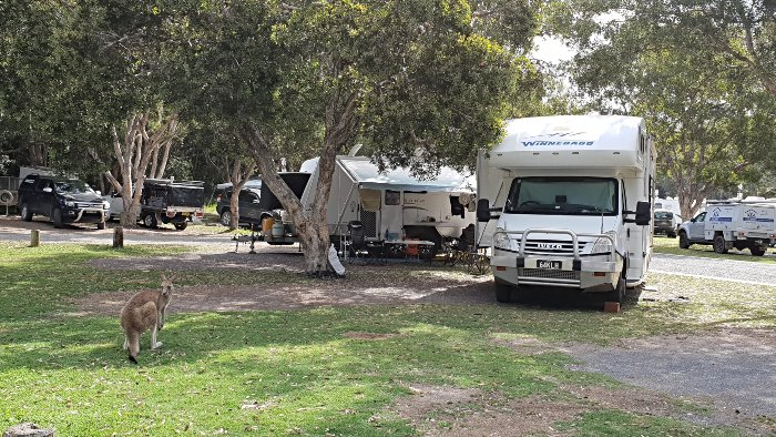 Our campsite at Diamond Head Campground