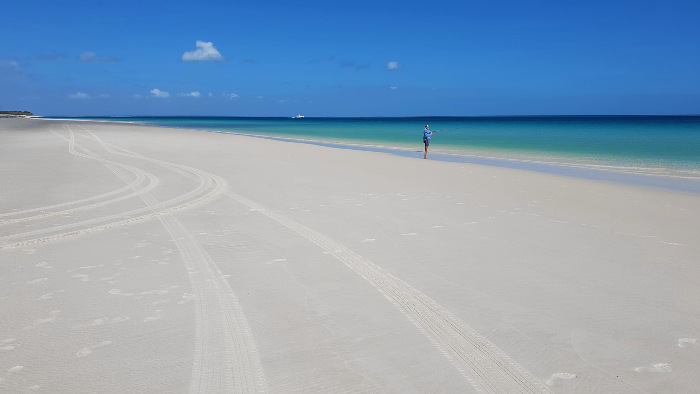 The Ultimate Guide to Exploring Fraser Island