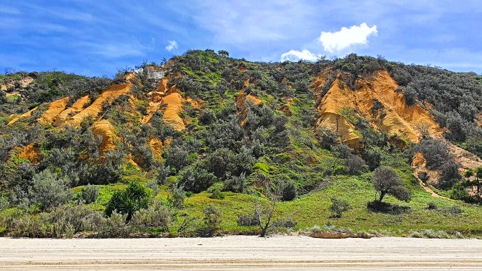 Everything to See and Do on Fraser Island - The Cathedrals