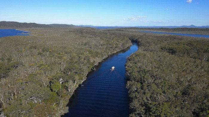 The Noosa Everglades are a must do on the Sunshine Coast