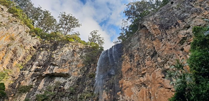 Springbrook National Park Top 5 Attractions