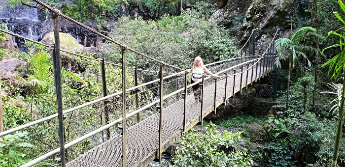 Springbrook National Park Top 5 Attractions - John Stacey Suspension Bridge