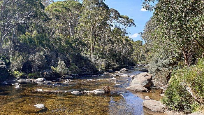 Ngarigo Campground runs alongside Thredbo River