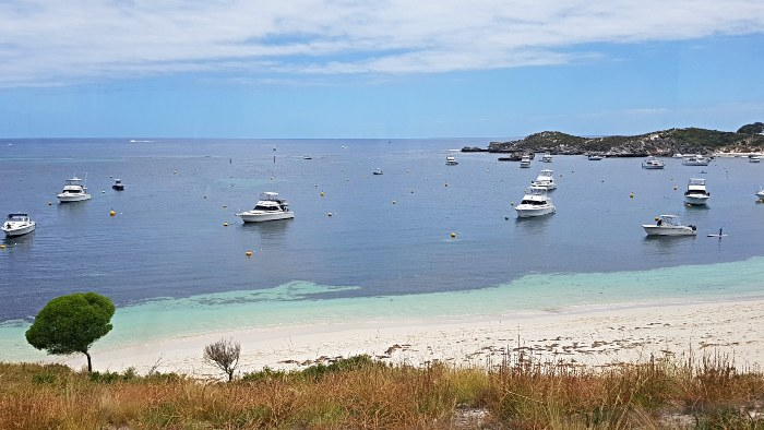 Rottnest Island - 14 Australian Islands to visit on your Big Lap