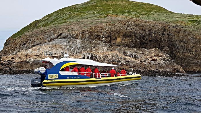Pennicott Wilderness Cruise, Bruny Island