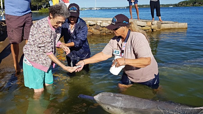 Kev's Mum feeding the dolphins at Barnacles Cafe