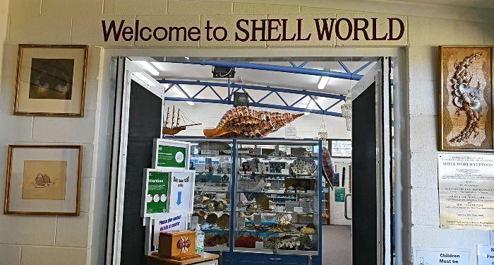 Shell World Yeppoon