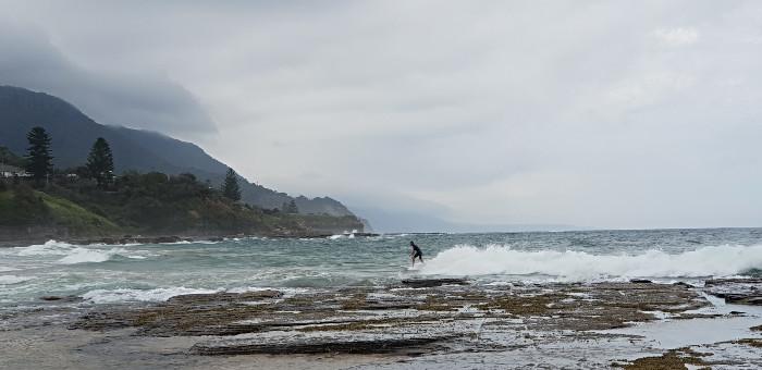 Coledale Surf
