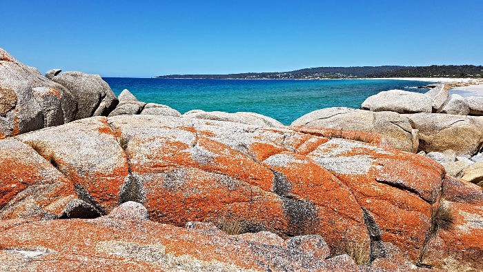 Swimcart Beach Bay of Fires - The best of the great free camping in Tasmania