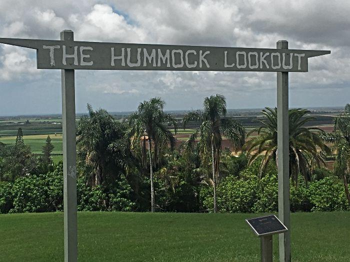 The Hummock