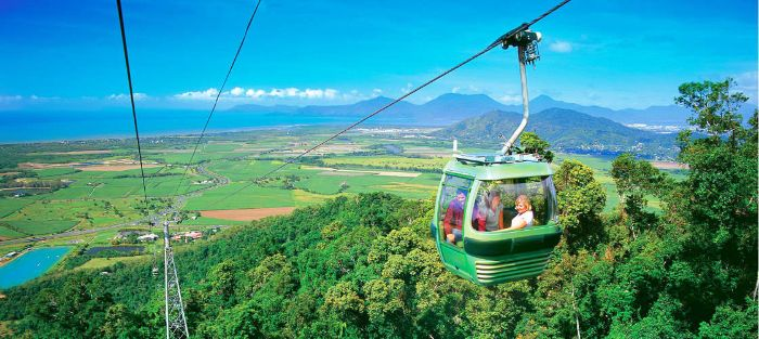 Tours and Things to see and do in Cairns