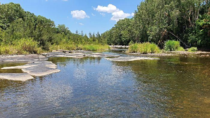 Cattle Creek