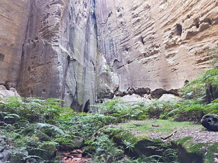 Carnarvon Gorge Ampitheatre