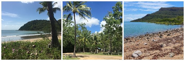 Cape Hillsborough Camping Feature