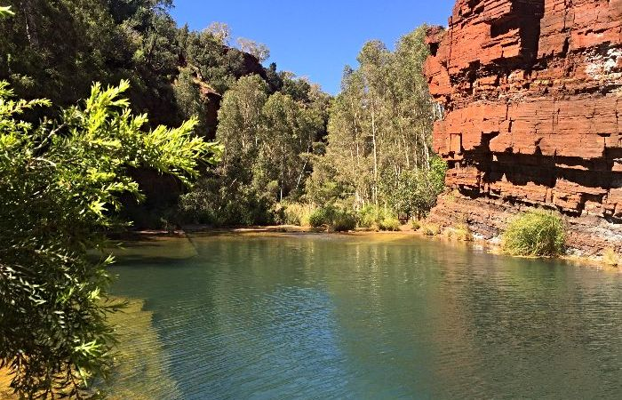 Fortescue Falls - One of the most Amazing Things to do in Western Australia