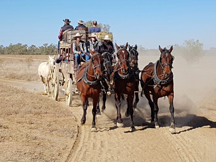 Cobb & Co Stagecoach Experience - Things to do in Longreach
