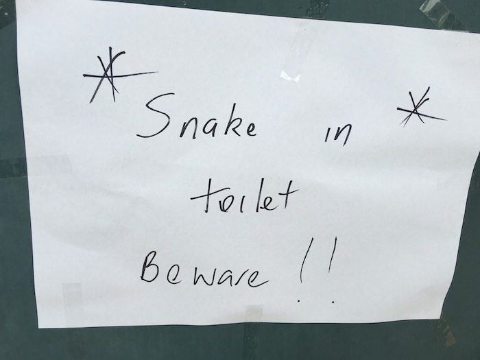 Snake in toilet was just one of things during life after 3 weeks travelling
