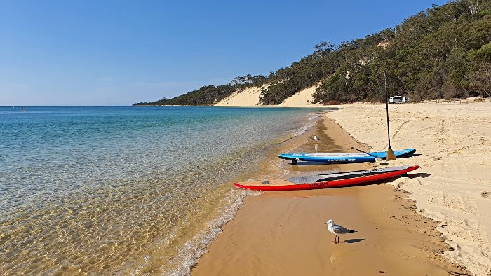 Stand Hp Paddle Boards Moreton Island